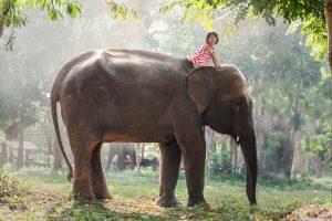 Laos-01