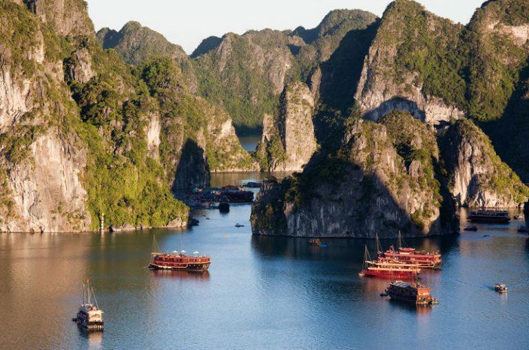 Zielony-Wietnam-02