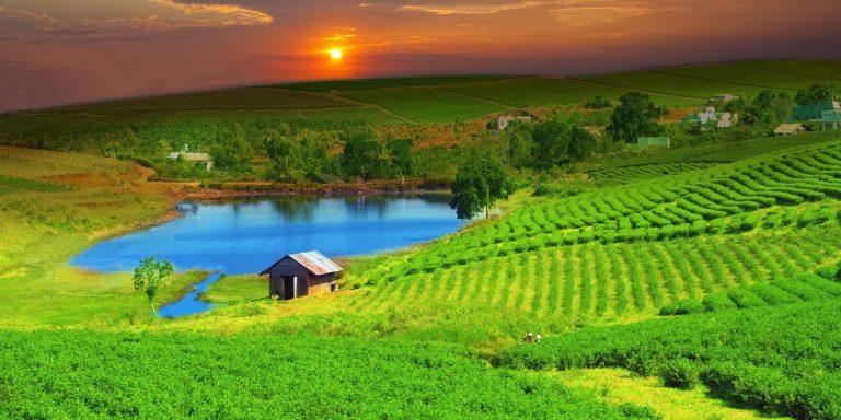 Zelený Vietnam