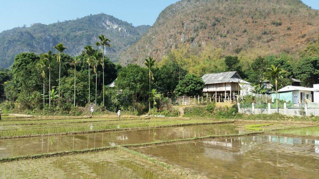 rezerwat przyrody Pu Luong wycieczka wietnam